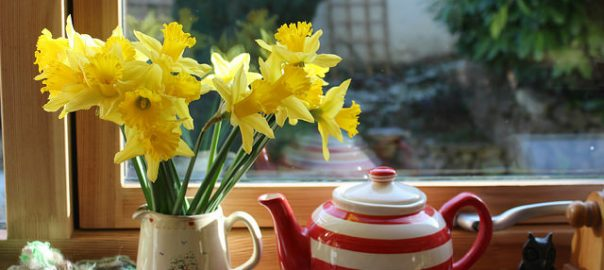 Spring daffodils on a windowsill with a tea pot
